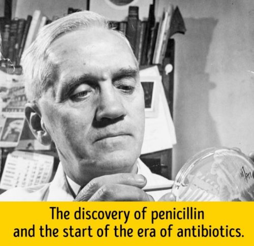 how penicillin changed the world essay