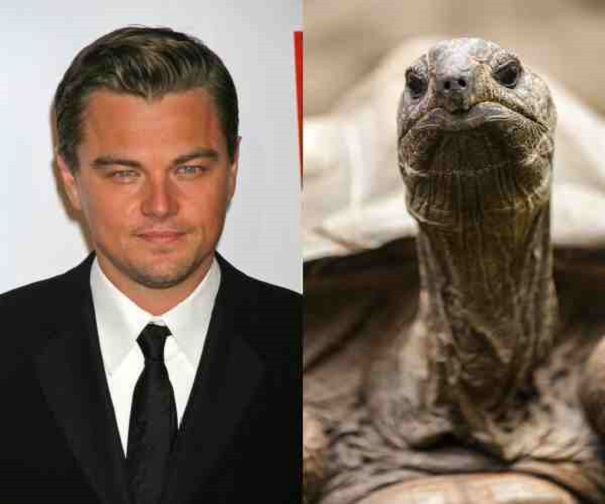 famous people with weird pets 16