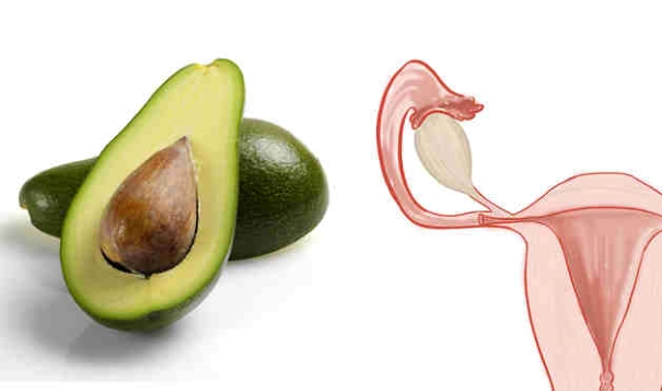 foods resembling body parts (10)