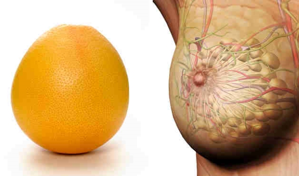 foods resembling body parts (2)