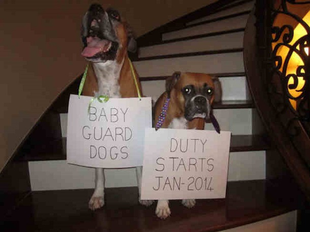 funny baby announcements 7