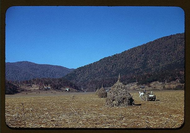 rare color photos - 1940s (13)