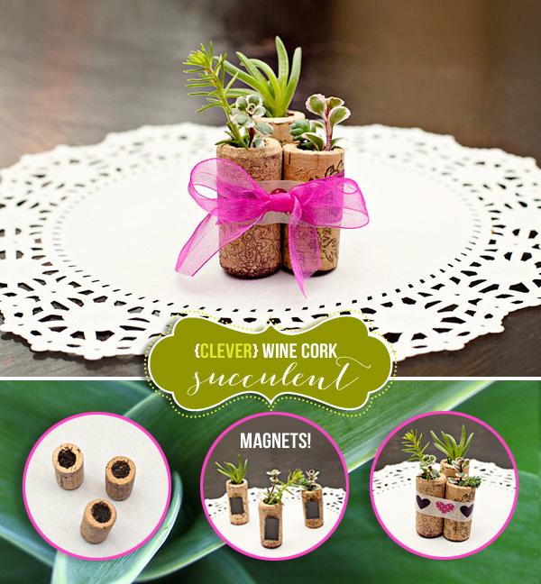 succulentplanters