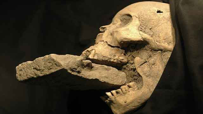 archaeological discoveries - venetian vampire