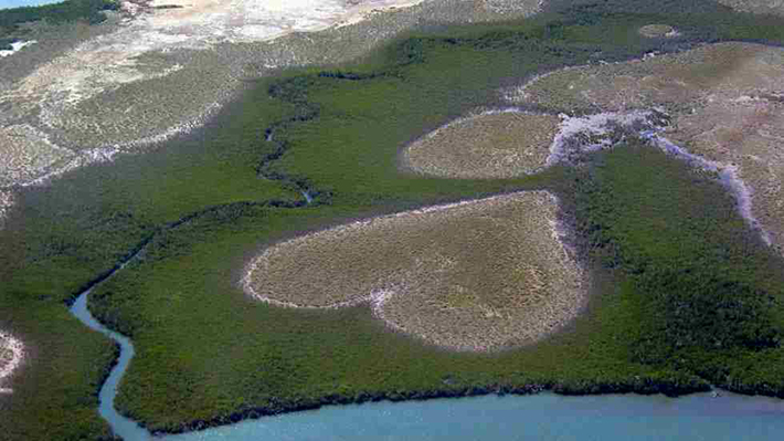 heart-shaped islands - coeur de voh new caledonia