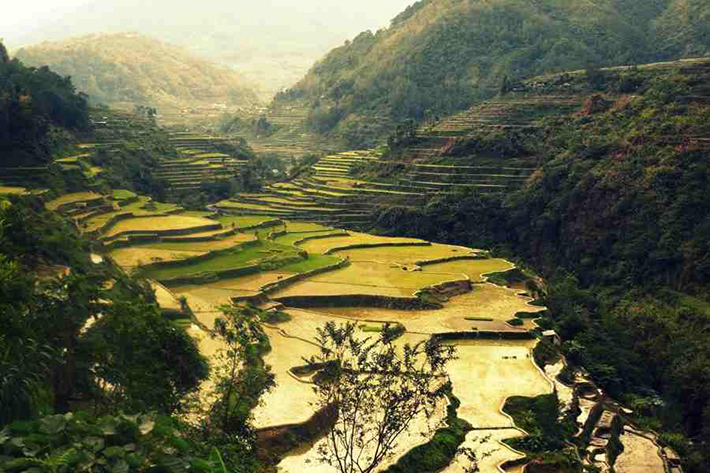 ph rice terraces 16