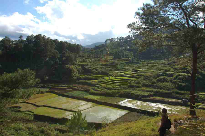 ph rice terraces 17