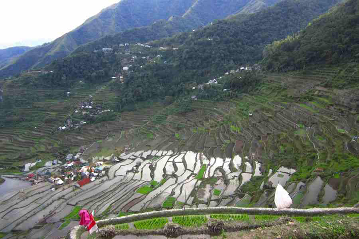 ph rice terraces 18
