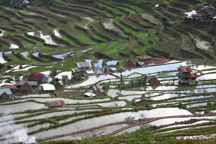 ph rice terraces 19