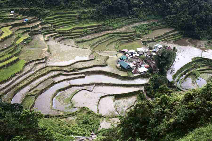 ph rice terraces 20