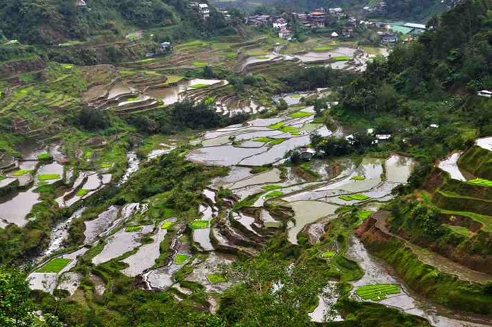 ph rice terraces 21