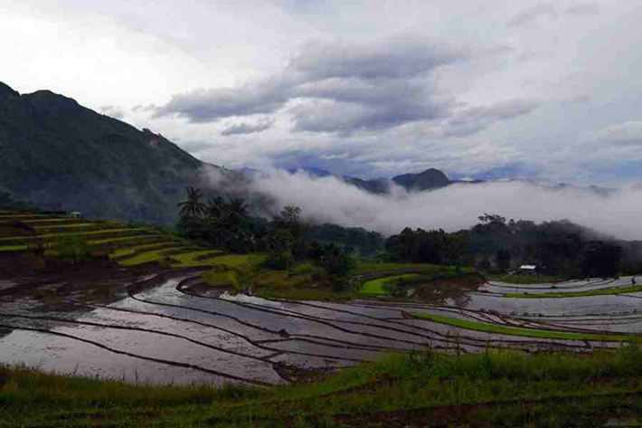 ph rice terraces 26