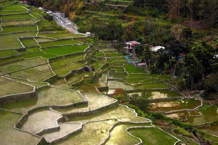 ph rice terraces 27
