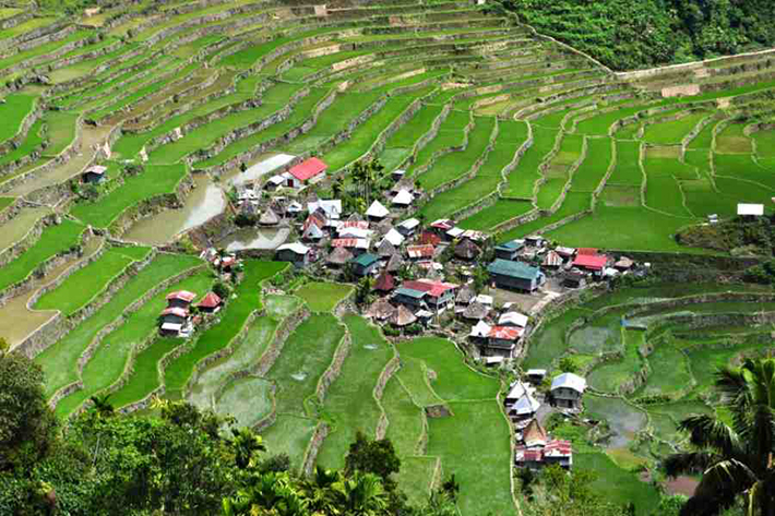 ph rice terraces 38