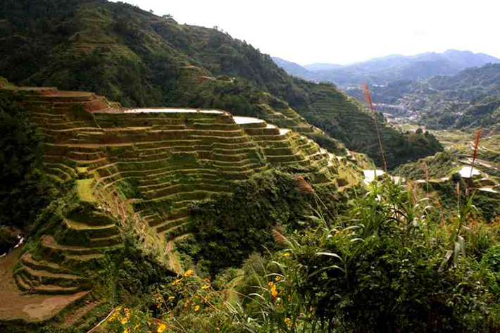 ph rice terraces 49