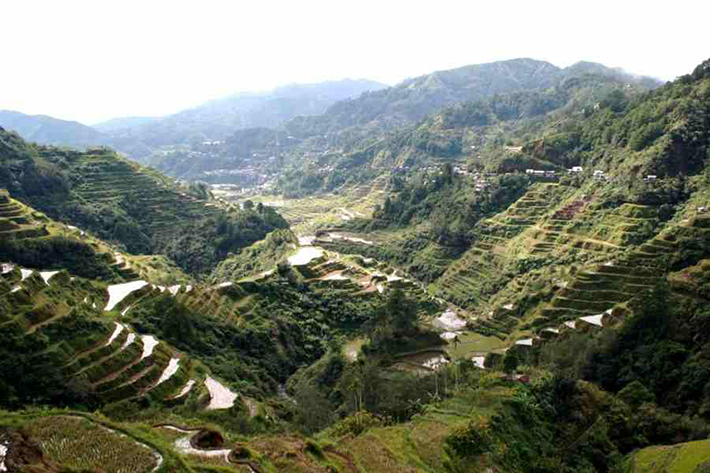 ph rice terraces 7