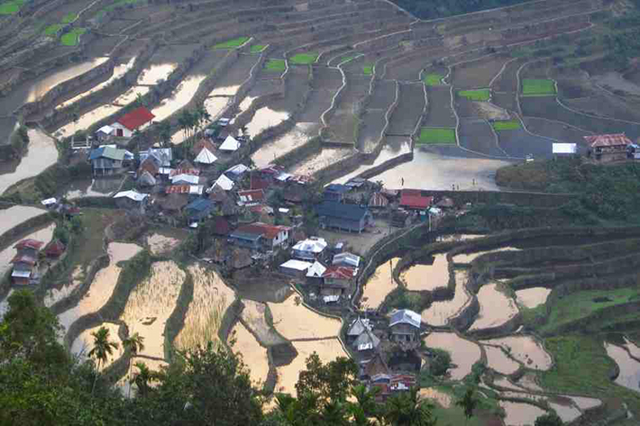 ph rice terraces 9
