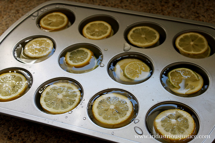 food hacks -  lemons slices ice cubes