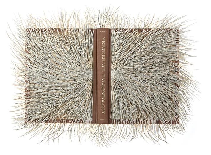 Wildenboer book art 02