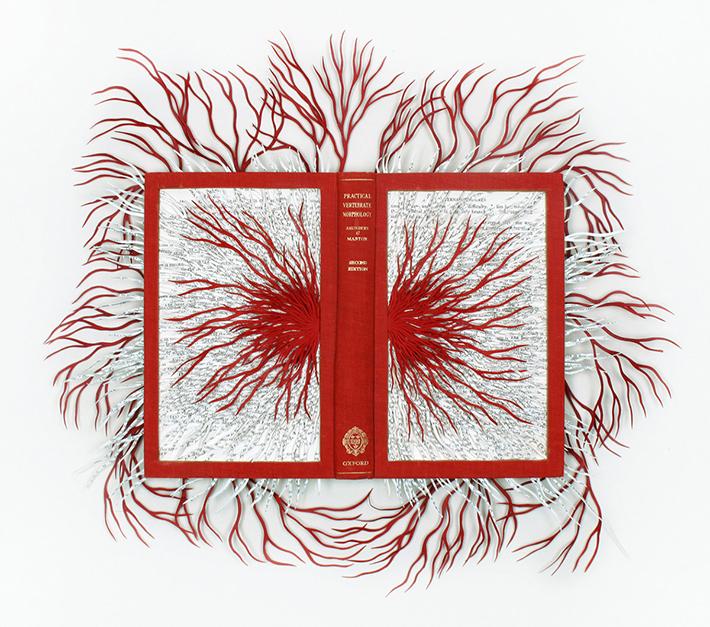Wildenboer book art 03