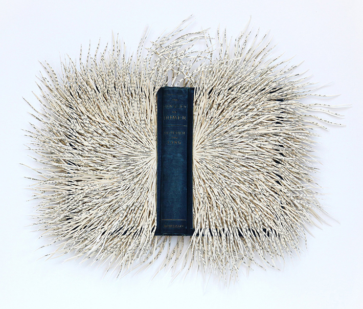 Wildenboer book art 04