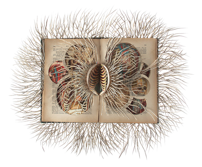 Wildenboer book art 05
