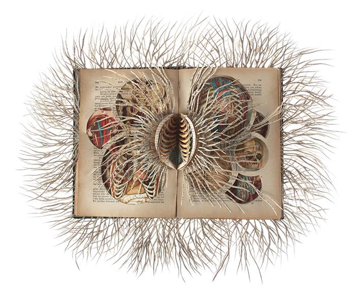 Wildenboer book art 05
