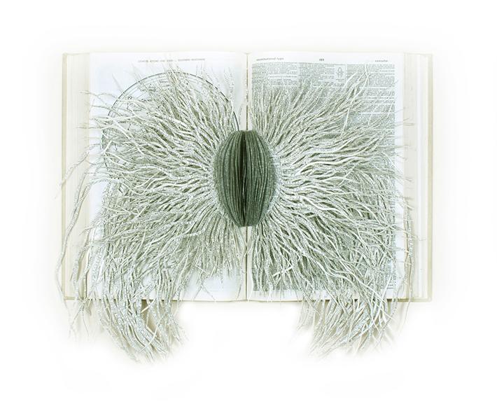 Wildenboer book art 06