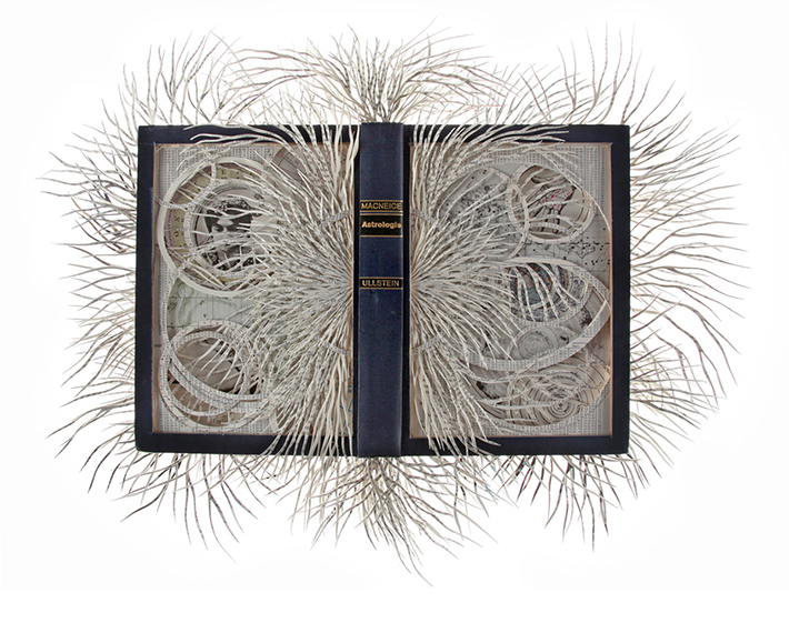 Wildenboer book art 08