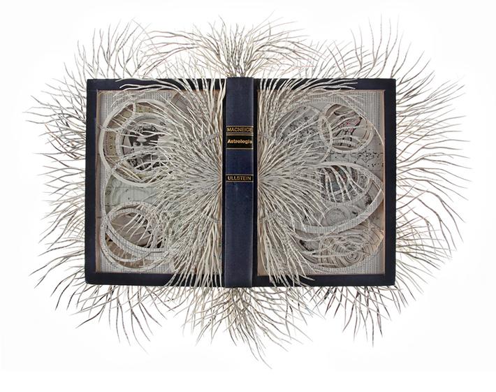 Wildenboer book art 08