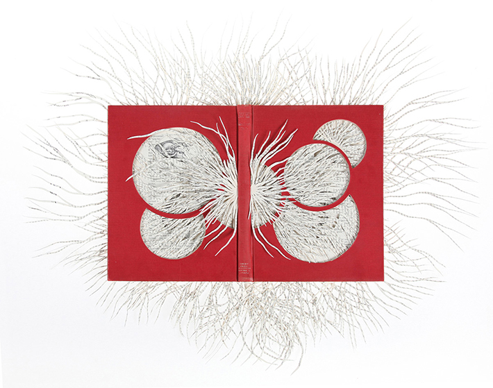 Wildenboer book art 09