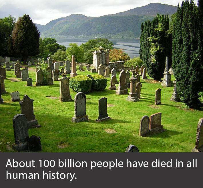 random history facts 11