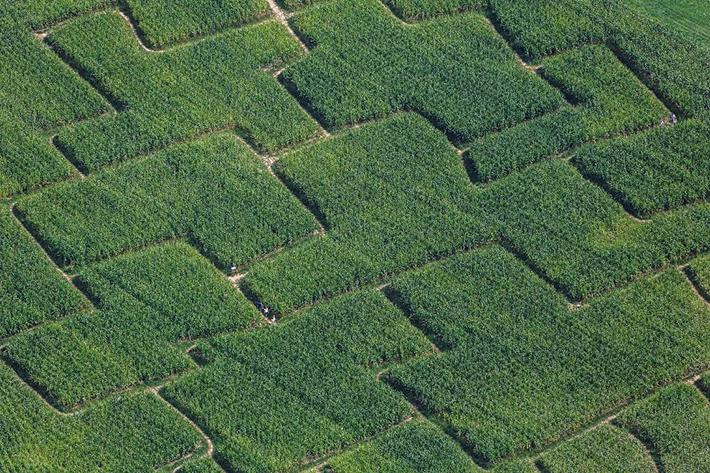 aerial photos - maze
