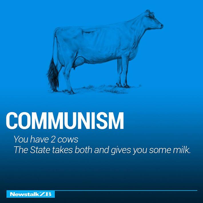 cow economics 1