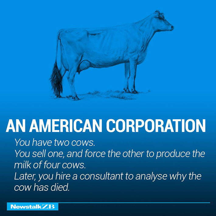cow economics 13