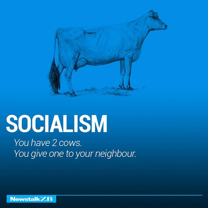 cow economics 2