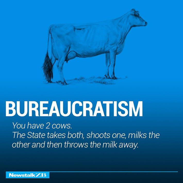 cow economics 6