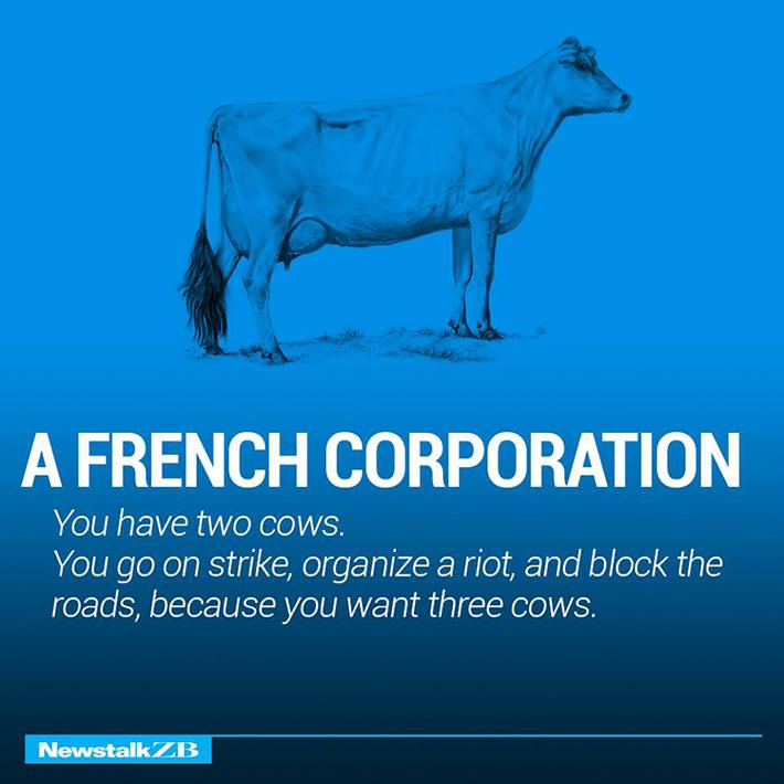 cow economics 8