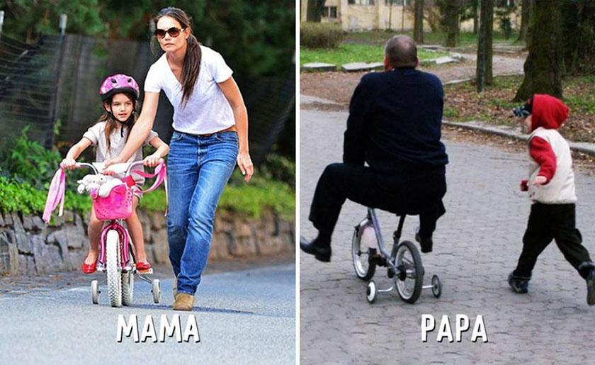 papa8