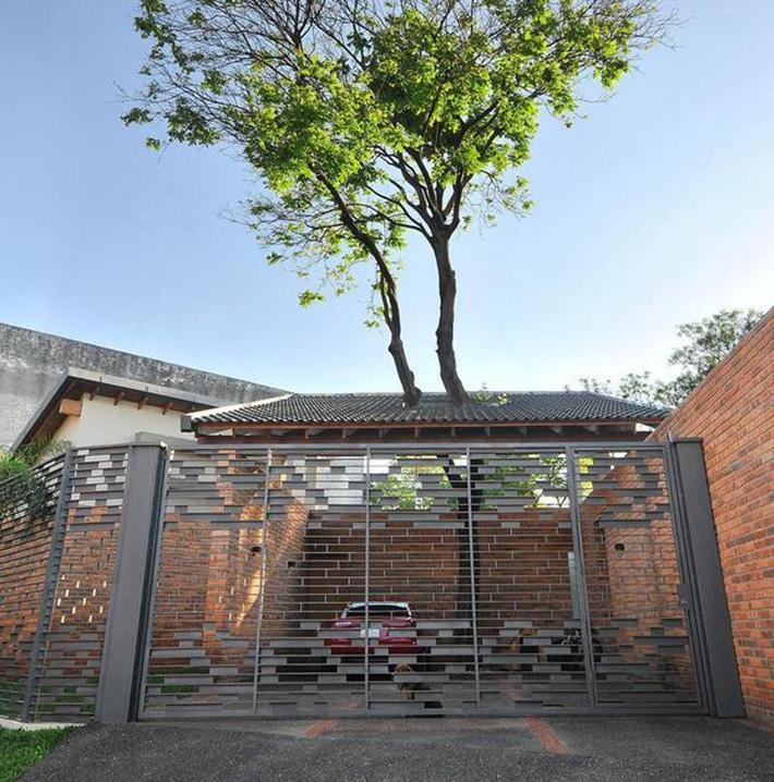 tree house 19