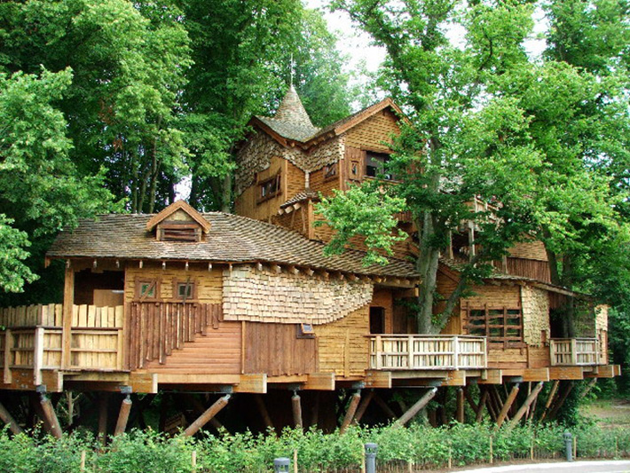 tree house 20