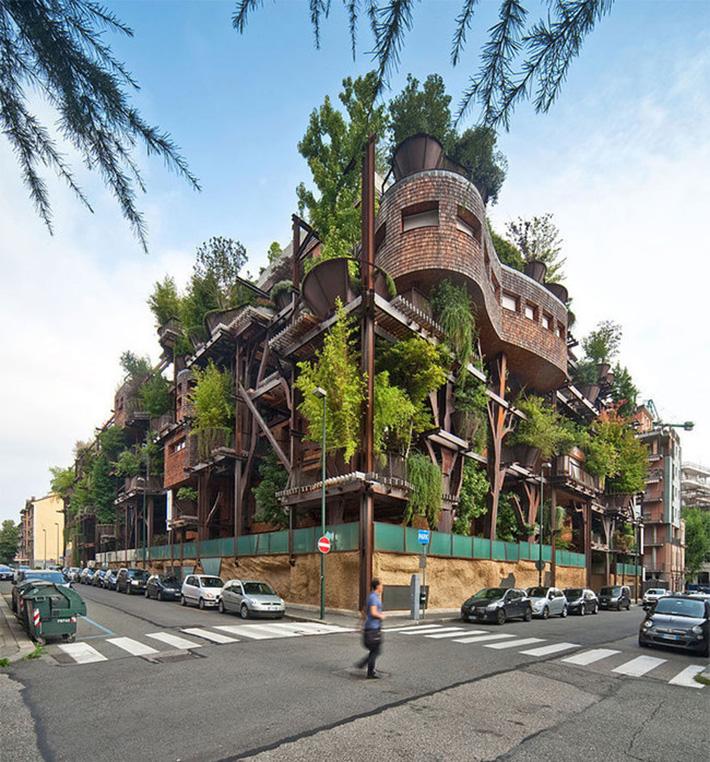 tree house 25