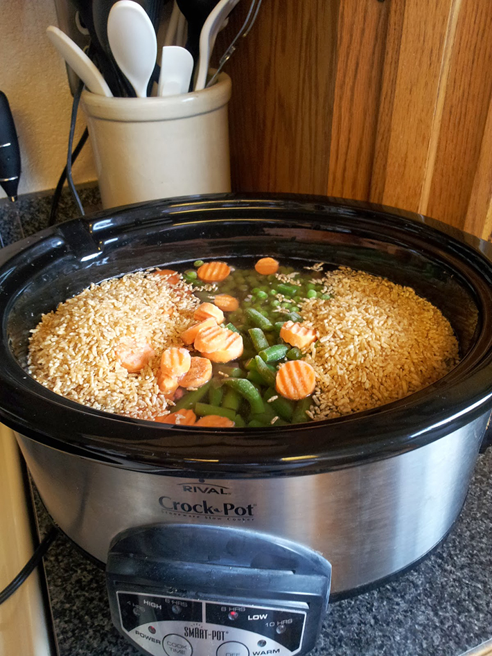 11 healthy homemade dog food recipes for your favorite pooch homemade dog food 2 forumfinder Choice Image