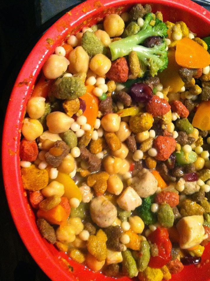 Rachael Ray Homemade Dog Food Recipes