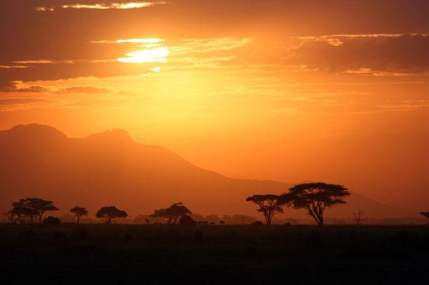 8-Serengeti-Tanzania